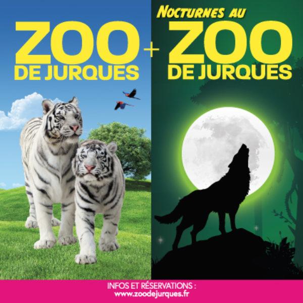 Combiné Jour + Nuit – Nocturnes au Zoo